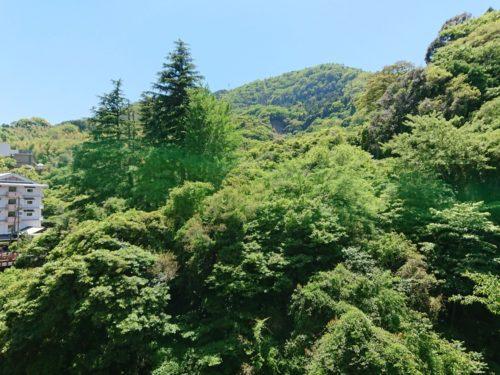 九州地方大分県を語る! 意外とあった旅行の思い出