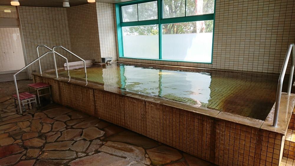 堀田温泉の源泉が注がれる内湯