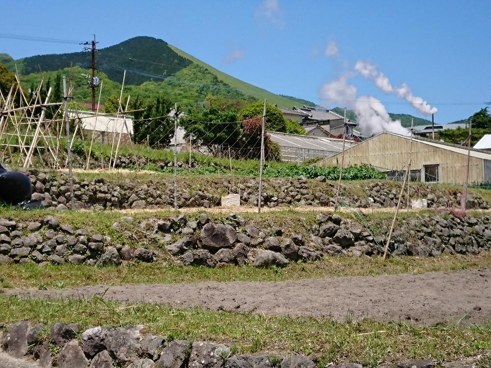 湯けむりと鶴見岳と畑