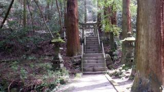 鳥居と階段の光景