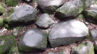 【熊野磨崖仏】鬼が造った道の近景
