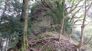 両子寺内にある森の遊歩道