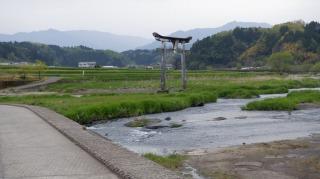 遊歩道から見える川の中の鳥居