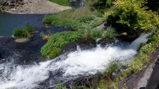 鳥居から下った先の原尻の滝