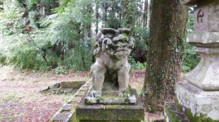 一ノ宮八幡社の狛犬