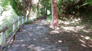 一ノ宮八幡社への遊歩道