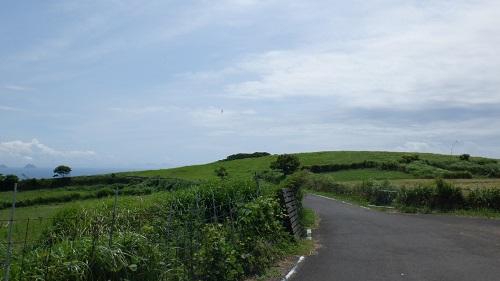 生月島内の緑が映える道路