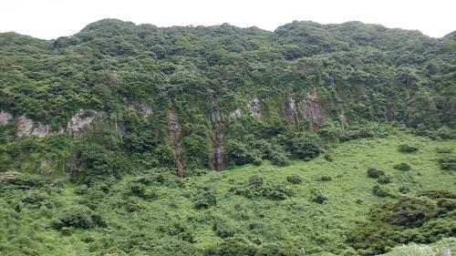 生月島内の緑が映える岩場