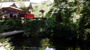 名水を求めて熊本県【白川水源】へ 阿蘇が育んだ美味しい水