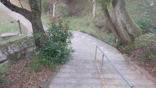 曾木の滝への階段