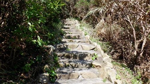 佐多岬遊歩道内の登り階段