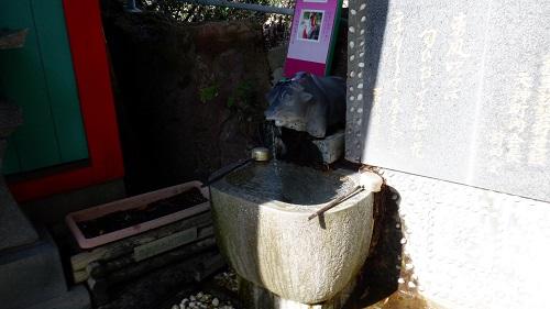 荒平天神の牛から流れる手水