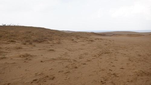 砂に囲まれている鳥取砂丘の光景
