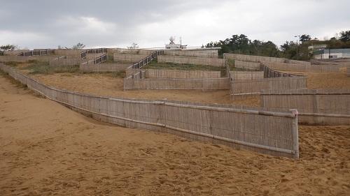 鳥取砂丘の砂嵐対策の柵