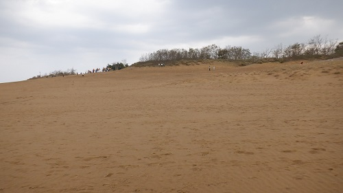 前後左右に広がる鳥取砂丘