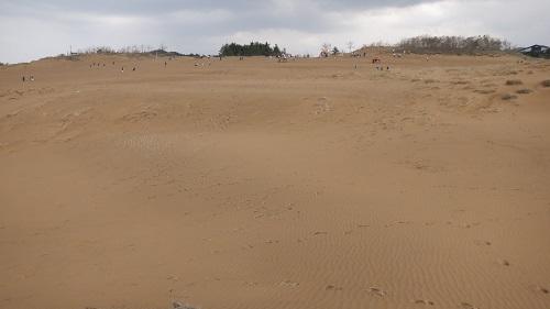 リフト乗り場へ続く鳥取砂丘
