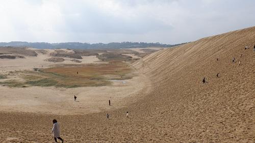 鳥取砂丘砂山の急斜面だがやや緩やかな場所