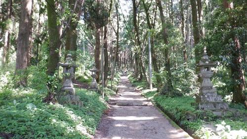 森の中を思わせる上色見熊野座神社の参道