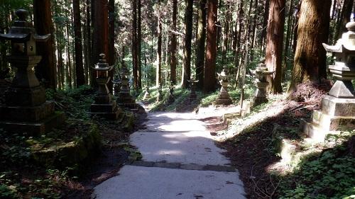 灯篭と木々が立ち並ぶ上色見熊野座神社の参道