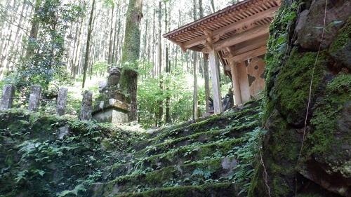 上色見熊野座神社の苔むした石段