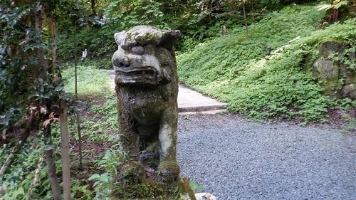 上色見熊野座神社の本殿前にある狛犬