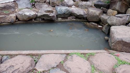 元の隅神社の並ぶ鳥居の中にある池
