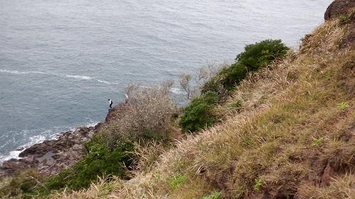 元の隅神社の鳥居の先にある岩場