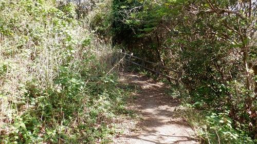 大バエ灯台の平らな遊歩道