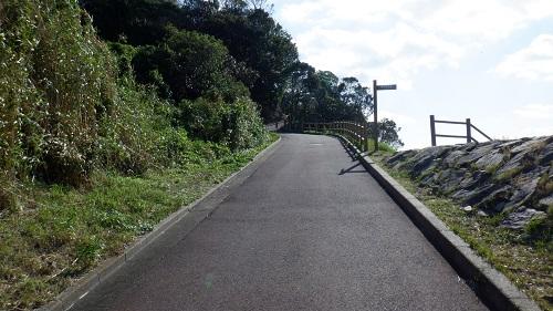 神崎鼻公園内の遊歩道