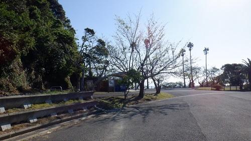 権現山駐車場の光景