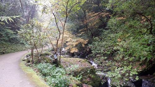 神庭の滝遊歩道と流れる川