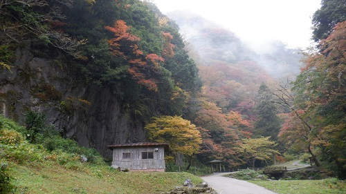 神庭の滝遊歩道と周辺の光景