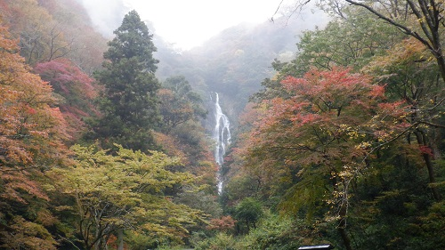 岡山県神庭の滝の光景