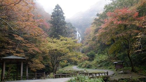 遊歩道から遠目に見える神庭の滝