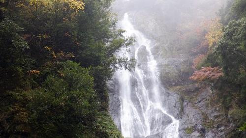神庭の滝にある鯉岩と周辺の景色