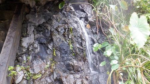 真賀温泉内で流れている温泉
