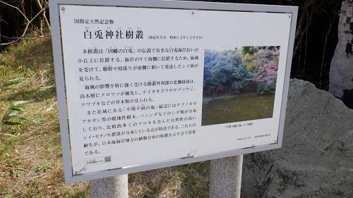 白兎神社樹叢の説明看板