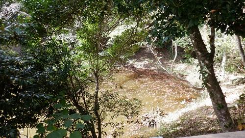 白兎神社内にある御手洗池