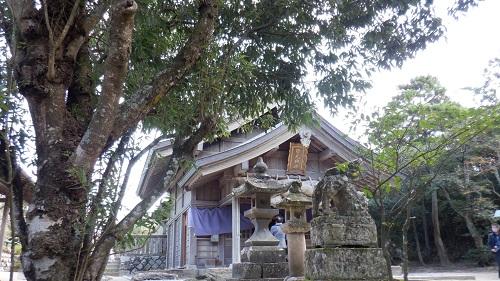 白兎神社の拝殿と周辺の景色