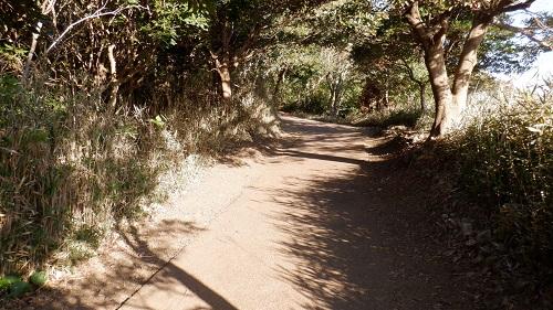 クルスの海展望台から続く遊歩道