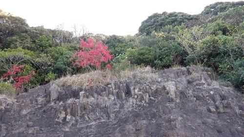 馬ケ背遊歩道から見える岩