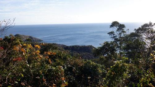 細島灯台へ続く遊歩道から見える海の光景
