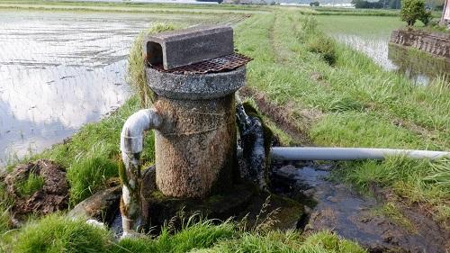 役犬原の自噴湧水群の湧水