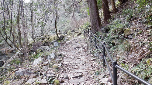 福貴野の滝の歩きにくい遊歩道