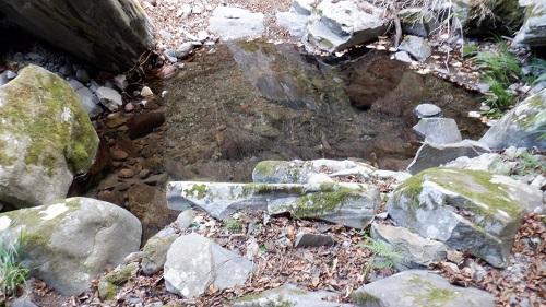 福貴野の滝の川の水