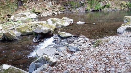 福貴野の滝から流れてくる川