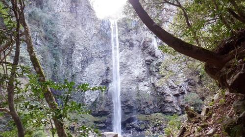 正面から見た福貴野の滝