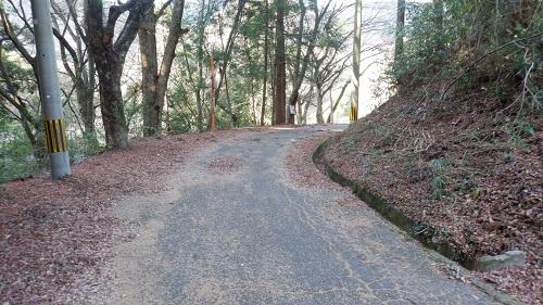 福貴野の滝展望台に続く道
