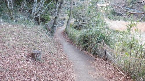 福貴野の滝展望台に続く細い道