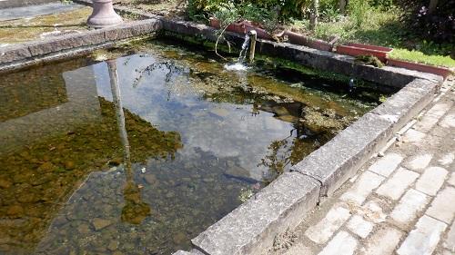 孔子公園内にある池
